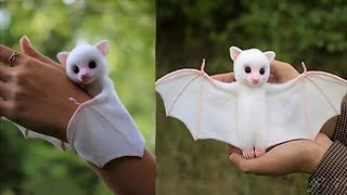 9 Cute Exotic Animals You Can Own as Pets