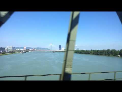 Train over Danube Vienna to Brno tree hunting trip