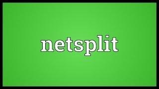 Netsplit Meaning