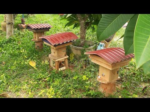 การเก็บน้ำผึ้งจากชันโรงอิตาม่า และแยกขยายรังเพิ่มใหม่