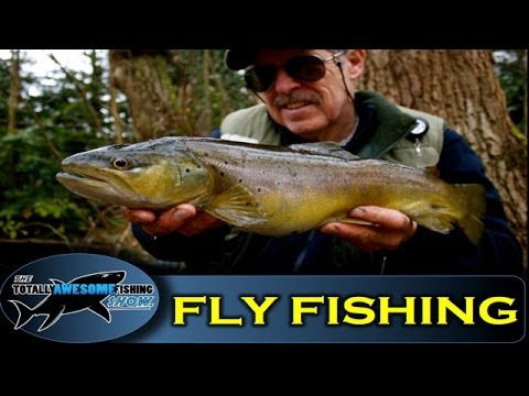 how to catch trout without fly fishing