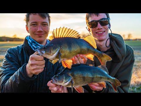 PERCH FISHING FOR BIG RIVER PERCH