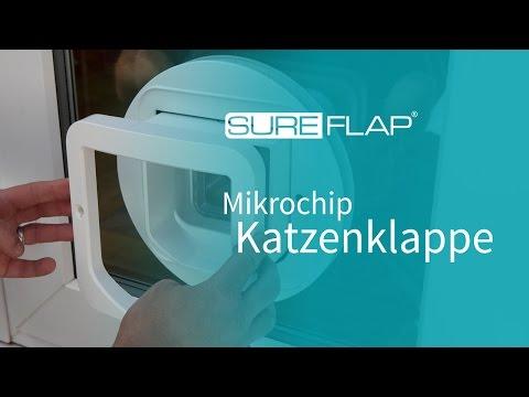 Glasinstallation von SureFlap Katzenklappe