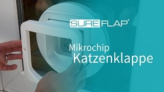 montageadapter f r glas f r kleine sureflap katzenklappe. Black Bedroom Furniture Sets. Home Design Ideas