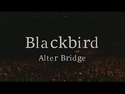 Blackbird - Alter Bridge [Official Video Lyrics]