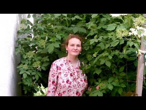 Liliane Scharf-Sieben Tränen -Offizielles Musikvideo