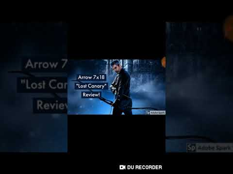 """Arrow 7x18 """"Lost Canary"""" Review!"""