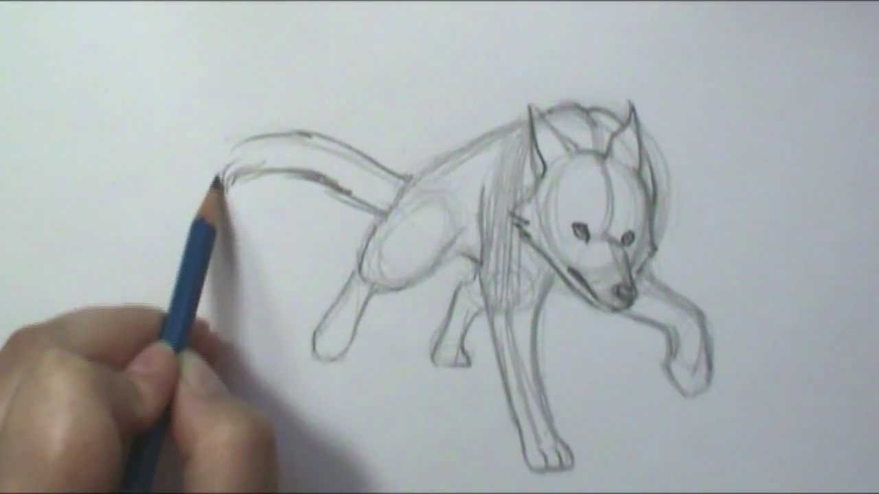 How To Draw Motion Wolf Running Youtube