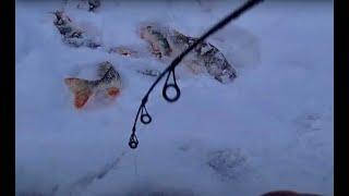 Балансир НЕ ТОНЕТ НА ДНО...ШОКИРУЮЩИЙ ЛИФТ МЕЧТЫ В ГЛУХОЗИМЬЕ!!рыбалка 2021,Бурлак Егерь