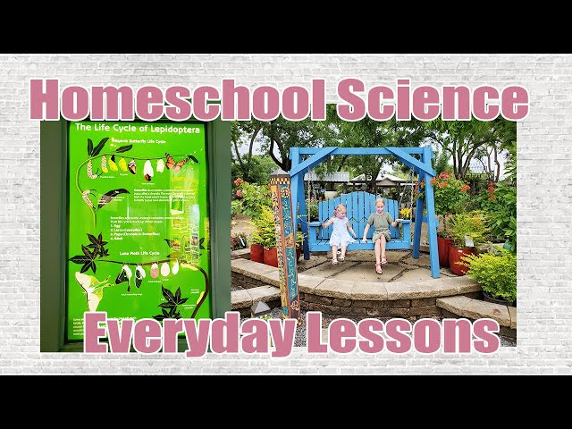 HOMESCHOOL SCIENCE EVERYDAY LESSONS | Monarch Butterfly Raising and Life Cycle | Milkweed Movement