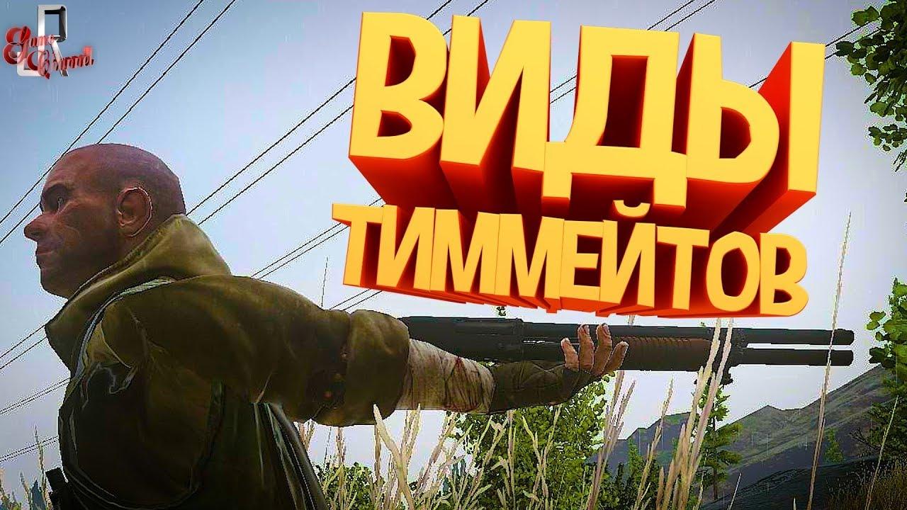 Виды тиммейтов ( Escape from tarkov / CoD MW )