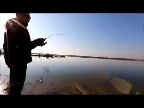 видное рыбалка форель
