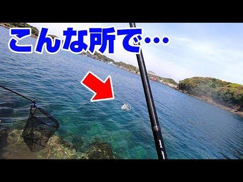 【釣りYoutuberの2泊3日間#3】思いもしなかった【高級魚】が釣れた!
