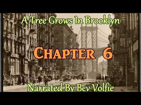 A Tree Grows In Brooklyn Ch 6