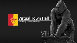 Virtual Town Hall (May 4th, 2018)