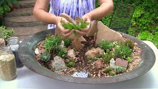 Gambar cover How to Make a Mini Succulent Landscape in a Fire Pit, DIY