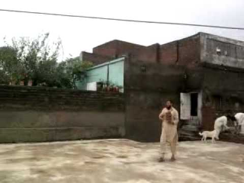 Qazipur flood in home
