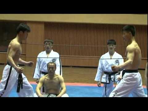 Incredible Ultimate N Korean Taekwondo 태권도.flv