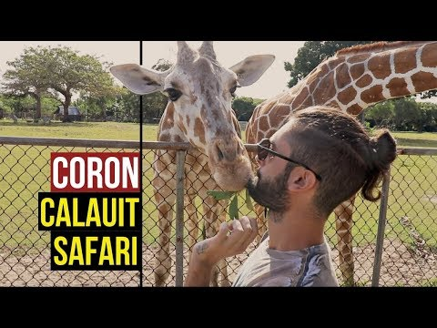 HOW TO KISS A GIRAFFE - A BIT OF AFRICA IN THE PHILIPPINES | VLOG 12