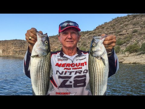 Top Water Striper Fishing at Lake Pleasant