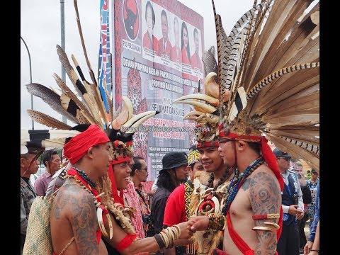 Naik Dango Ngabang Landak, Gawai Harvest Festival Borneo Tribal Culture