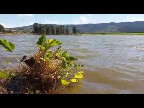 Em Monte Santo De Minas BR Lagoa Do Tiago Siqueira