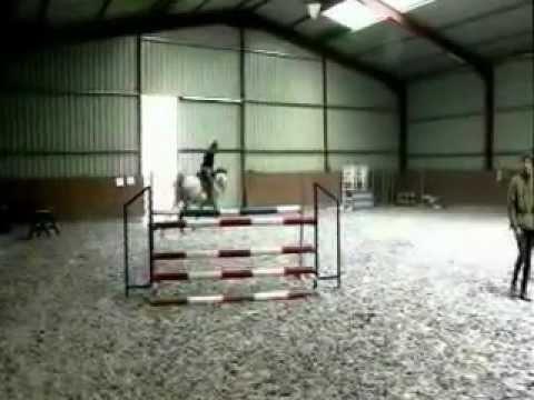 Video na koni sex
