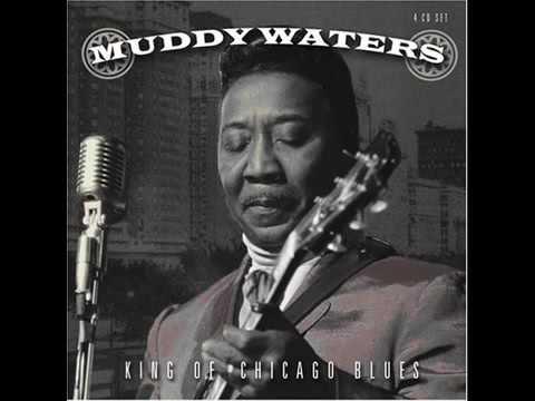 Muddy Waters   Catfish Blues