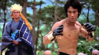 Bruce Lee VS Tony Jaa (lektor Pl)
