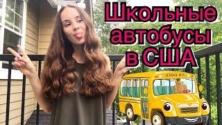 Американские школьные автобусы/ Школьные автобусы в США