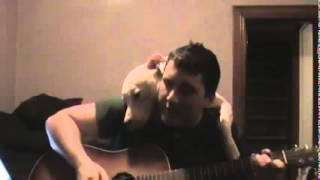 Người yêu có thể không có nhưng chó nhất thiết phải có một con ... guitar