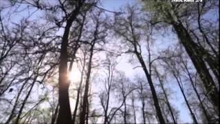 видео Усадьба Кусково, Москва (как добраться на метро, автомобиле)