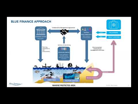 Financing Coral Reef Conservation and Management: Conservation Trust Funds and Impact Investing