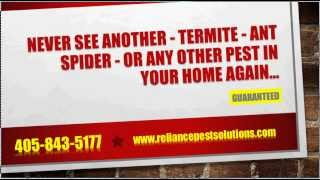 Pest Control Oklahoma City, Best Pest Control in Oklahoma City By Reliance Pest Solutions