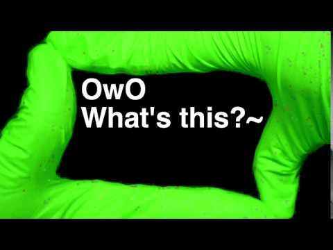 How to Pronounce OwO What's this?~