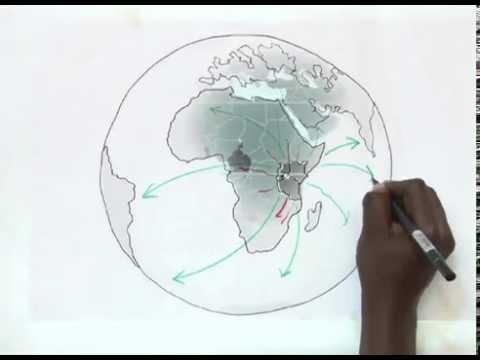 Introducing the Development Initiatives Africa Hub