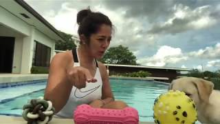 ALICE DIXSON'S SWIMMING-BONDING MOMENT WITH HER DOG