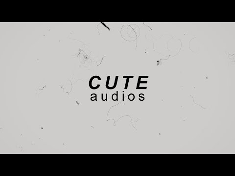 Music Finder│Cute Audios