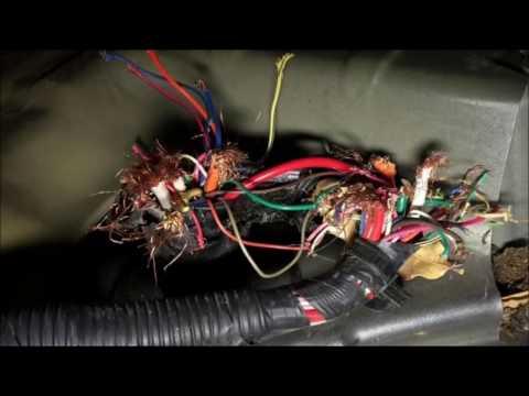 วิธีป้องกันหนูกัดสายไฟ | Car of Know