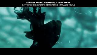 flowers and sea creatures david granha better tomorrow tone depth remix