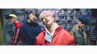 iKON - B-DAY X BLING BLING '벌떼X블링블링' MASHUP