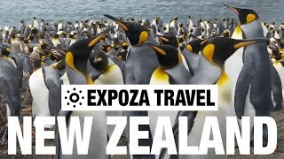 New Zealand Part 1 (Oceania) Vacation Travel Wild Video Guide