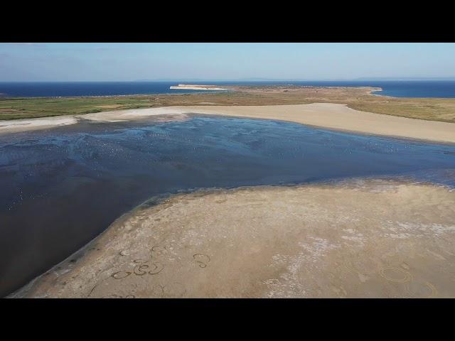 Gökçeada Tuz Gölü - 2019