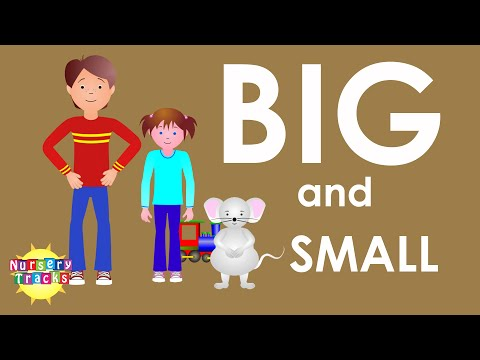 Learn Bigger and Smaller