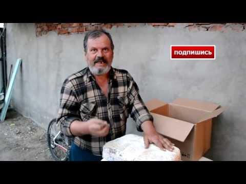 где купить семена грибов вешенка в новосибирске