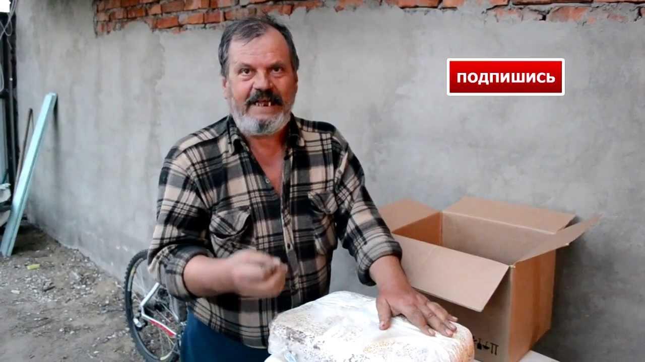 как делать грибные блоки - купить мицелий и грибные блоки вешенка .