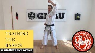 GMAU Shotokan Karate Live Class - Training the Basics Practice for the White Belt Test