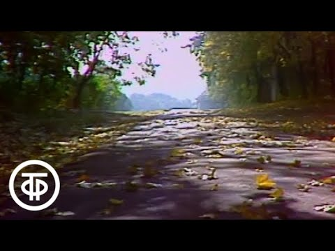 Ясная Поляна (1980)