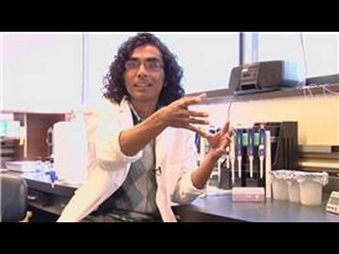 Genetic Engineering : Dangers of Genetic Engineering