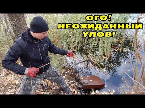 Поиск магнитом в болоте монета дорогобуж